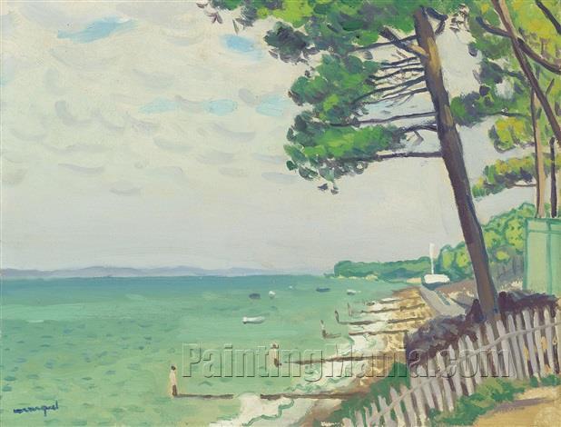 Pins au Pyla (Pyla Pines)