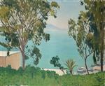 The Beach seen through the Eucalyptus