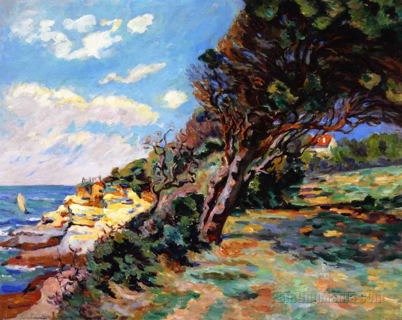 The Mediterranean Coast