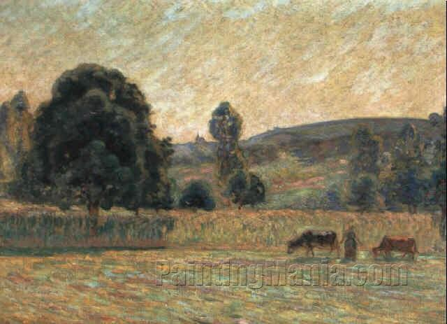 The Pastures