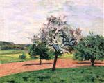 Apple Trees in Flower, Ile de France