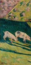 The Pigs (Les porcs)