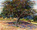 Trees at Ile-de-France