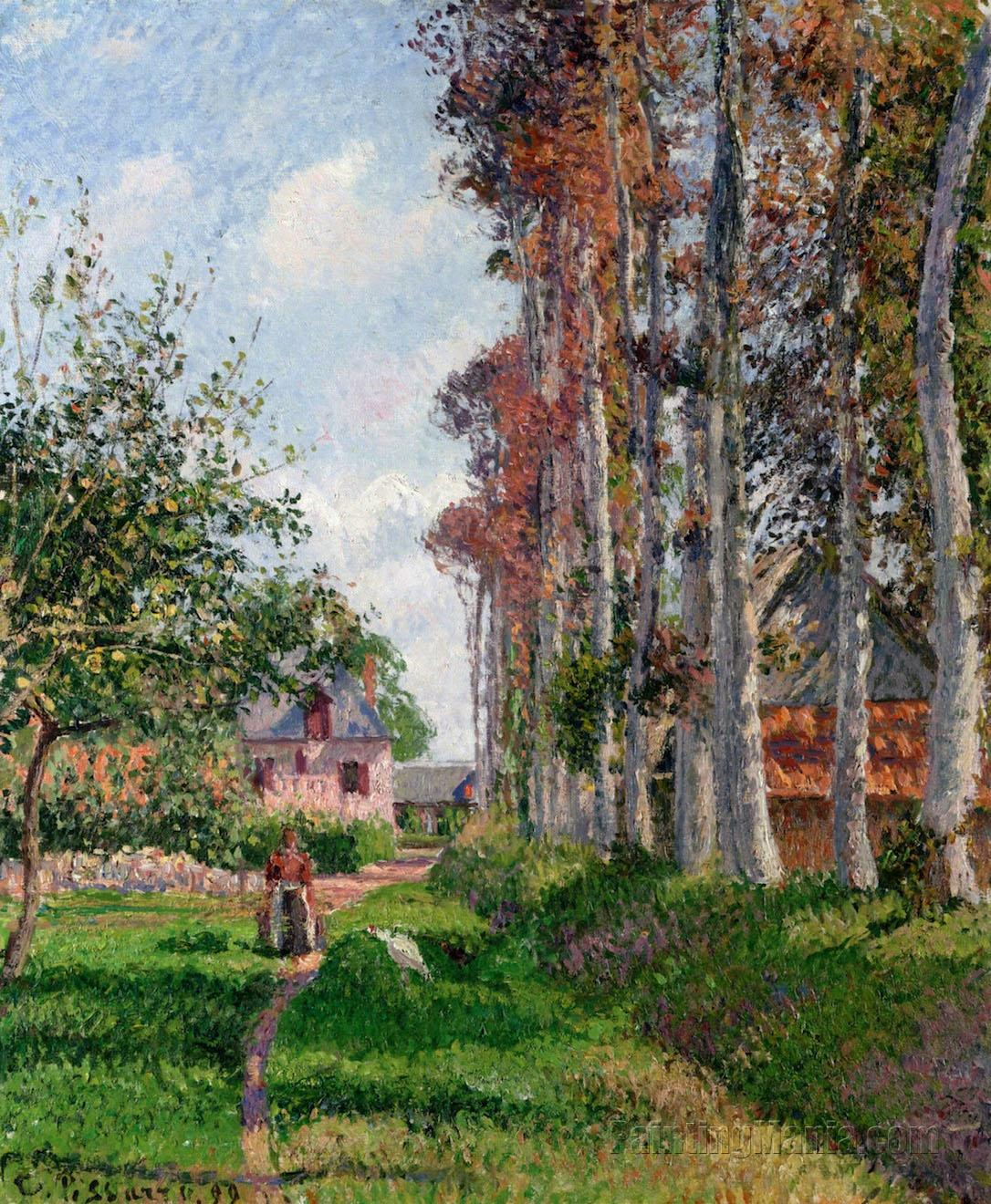 The Orchard of the D'Ango Manor, Varengeville, Morning