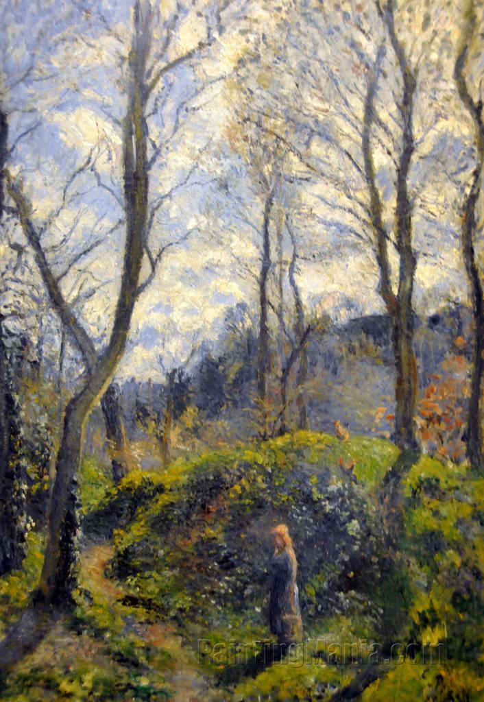 Woodland Scene, Spring