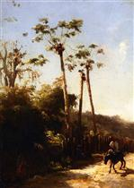 Antilles Landscape, Donkey and Rider on a Path