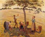 Apple Pickers, Eragny