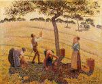 Apple Pickers, Eragny
