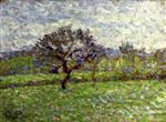 An Apple Tree at Eragny