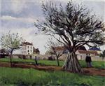 Apple Trees at Pontoise (The Home of Pere Gallien)