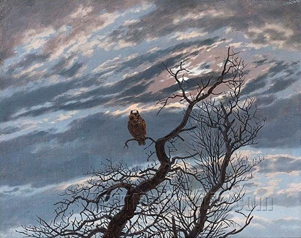 An Owl on a Bare Tree