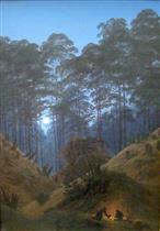 Forest Interior in the Moonlight
