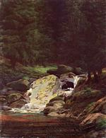 Pine Forest with Waterfall