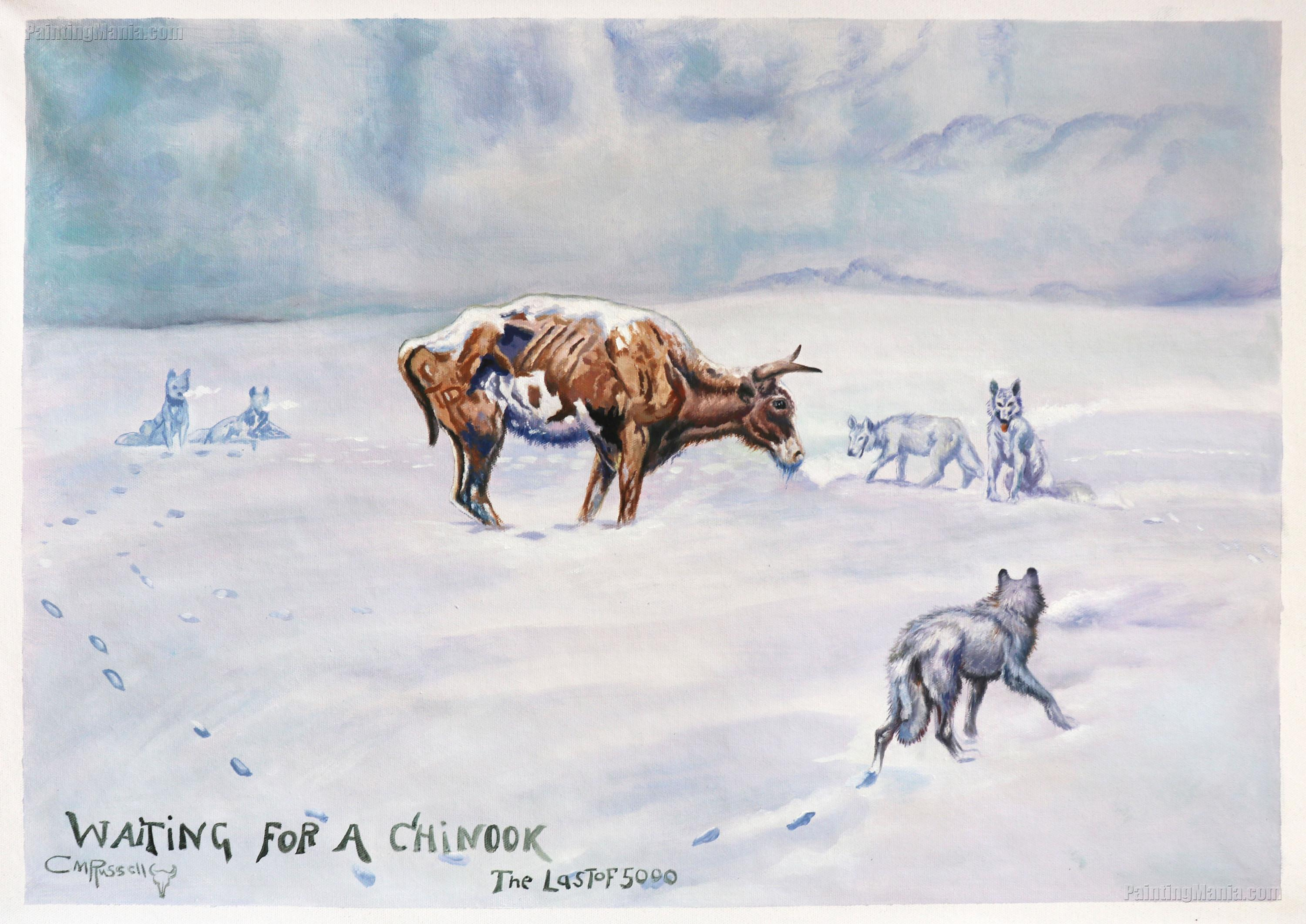 """Charles Russell /""""Waiting for a Chinook/""""  Steer Wolves in Winter"""
