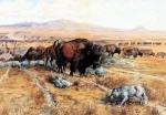 Guardian of the Herd