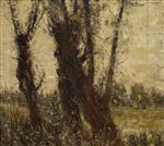 Alte Weidenbaume (Junge Pappeln)