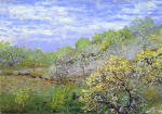 Apple Blossom 1873