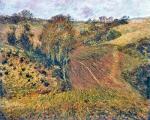 Fields in Etretat