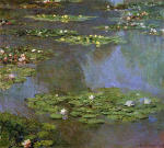 Water Lilies 10