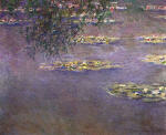 Water Lilies 16