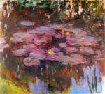 Water Lilies 23