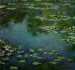 Water Lilies 73