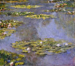 Water Lilies 81