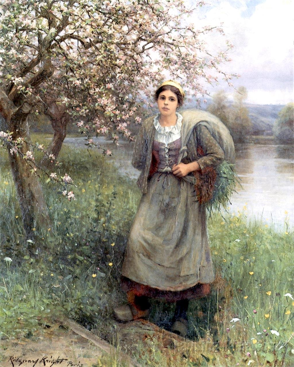 Apple Blossoms in Normandy