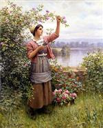 Gathering Roses 2
