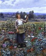 Picking Poppies