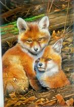 Two Little Red Foxes