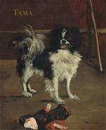 Tama the Japanese Dog