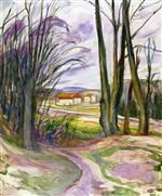 Landscape near Skoyen
