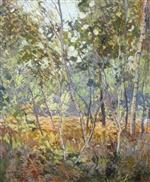 Forest Interior 1903-05