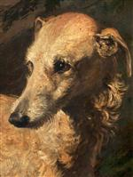 Head of 'Driver'. a Deerhound Owned by the 5th Duke of Gordon