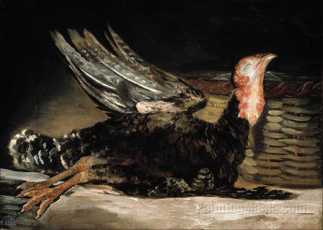 A Dead Turkey