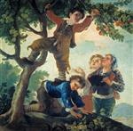 Boys Picking Fruit