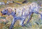 Siberian Dog (Dog Running in the Reeds)