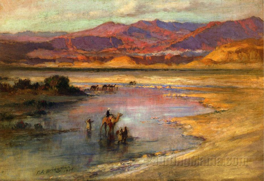 Crossing an Oasis, with the Atlas Mountains in the Distance, Morocco