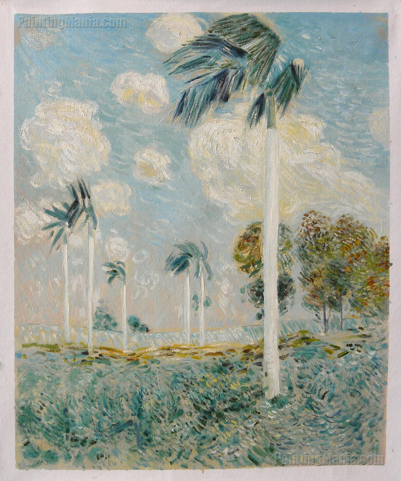 Royal Palms, Melena, Cuba