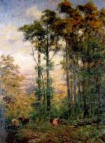 Forest Scene (Landscape - Mt. Macedon)