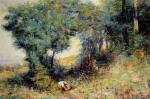 Wattle Glade
