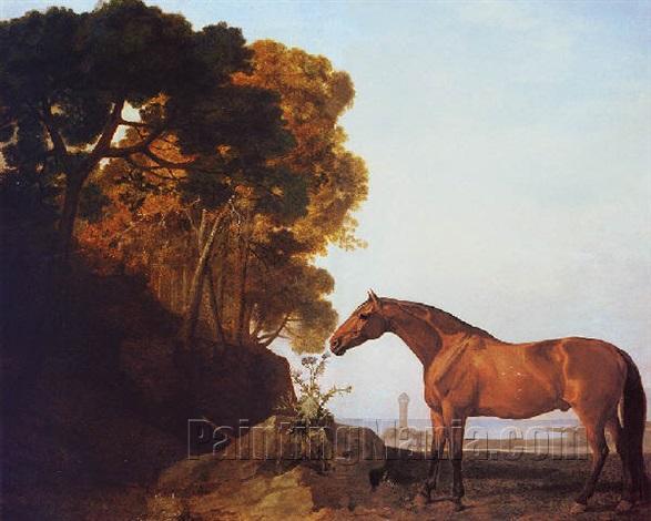 A Bay Arab in a Coastal Landscape