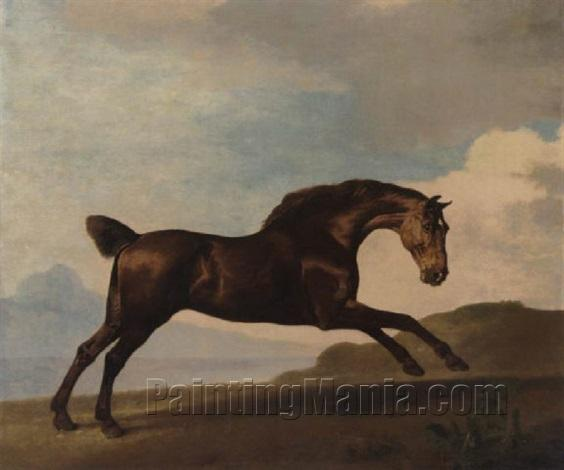 A Bay Hinter Galloping in a Mountainous Landscape