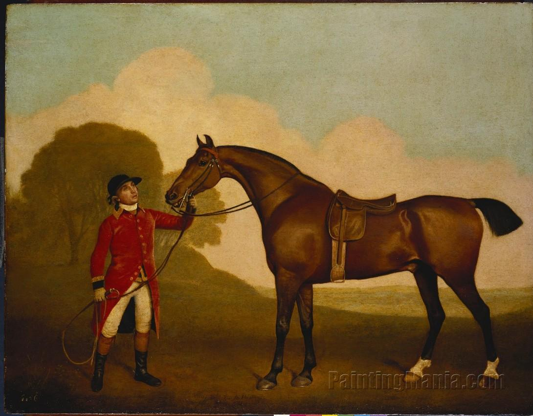 A Bay Horse with a Groom - George Stubbs Paintings