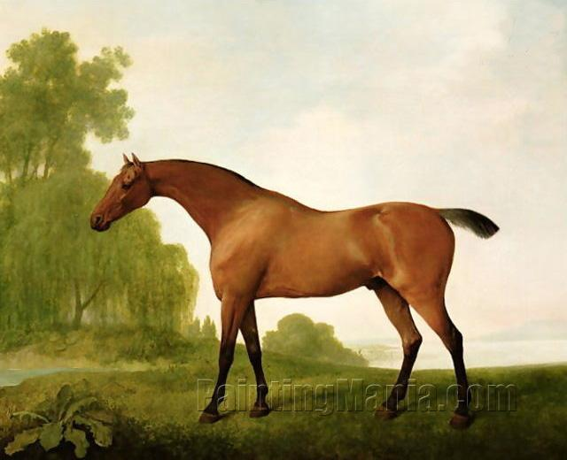 A Bay Thoroughbred in a Landscape