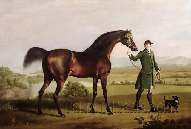 A Horse Belonging to the Rt. Honourable Lord Grosvenor called Bandy from his Crooked Leg