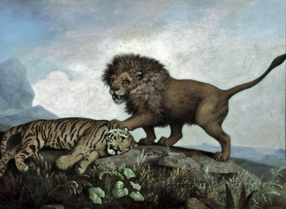 A Lion and a Tiger