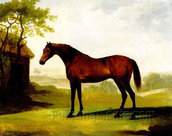 """""""Squirrel"""", a Bay Horse in a Field"""