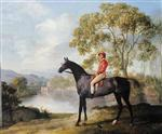 'Euston', A Dappled Grey Racehorse with Jockey Up in a River Landscape